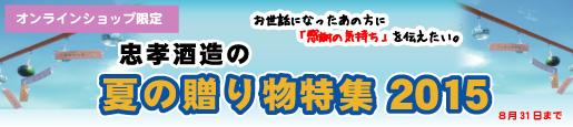 summer-gift-2015-banner