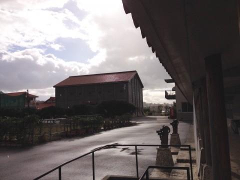 沖縄で雪?